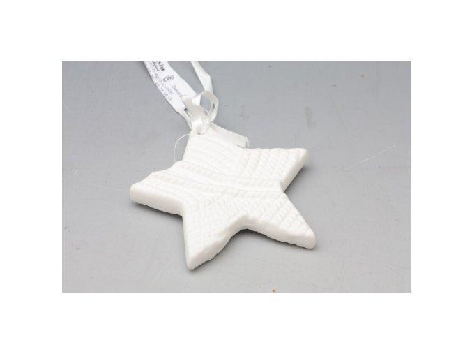 Hvězda porcelánová