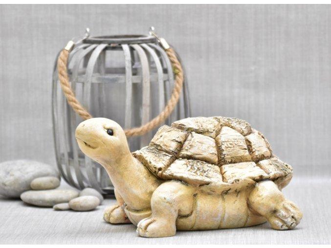 Želva Mia 15x24,5x32,4 cm