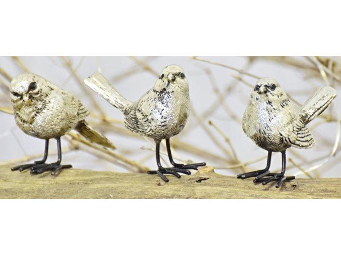 Ptáček Will 4,5 cm, mix druhů