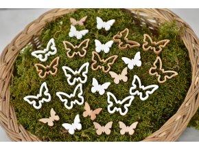 Dřevění motýlci s/24, mix barev