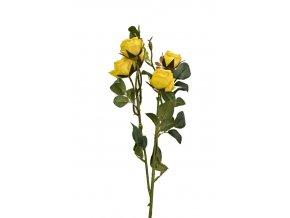 Růže 67 cm, žlutá