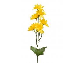 Heřmánek 40 cm, žlutý
