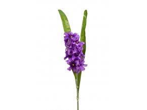 Hyacint 60 cm, fialový