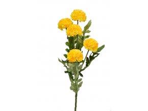 Tagetes 67 cm, žlutý