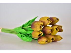 Kytice tulipánů s/10 zeleno-hnědá