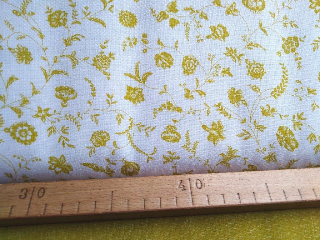 kiwi kvety bila latka metr