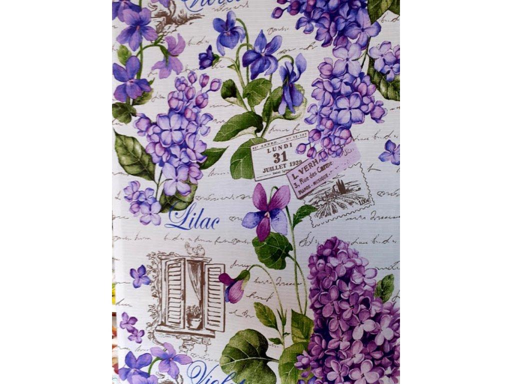violet fialky2