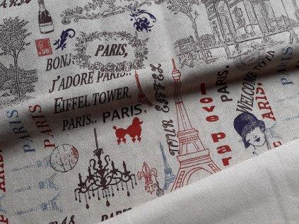 dama v parizi