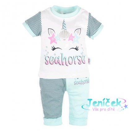Kojenecké tričko s krátkým rukávem a tepláčky New Baby seahorse