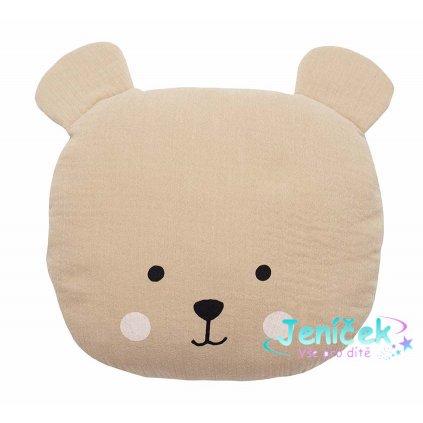 n0147 pillow teddy