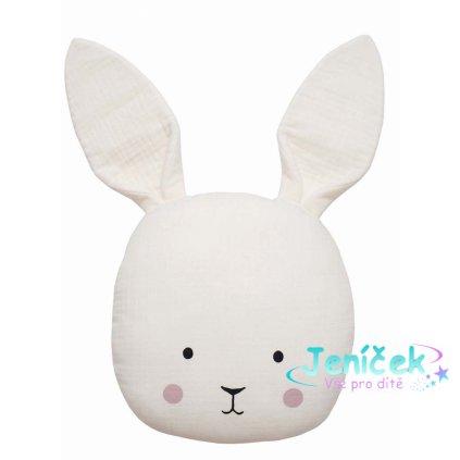 n0146 pillow bunny 1