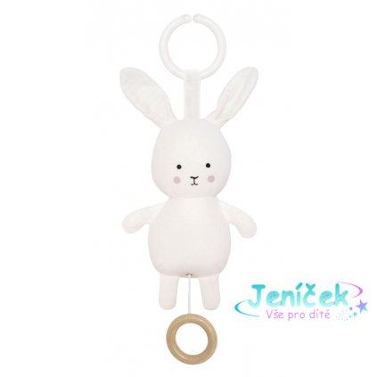 n0136 musical bunny
