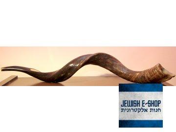 Gigantický šofar z Izraele 85-95cm