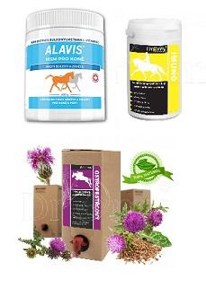 Vitamíny a doplňky stravy pro koně