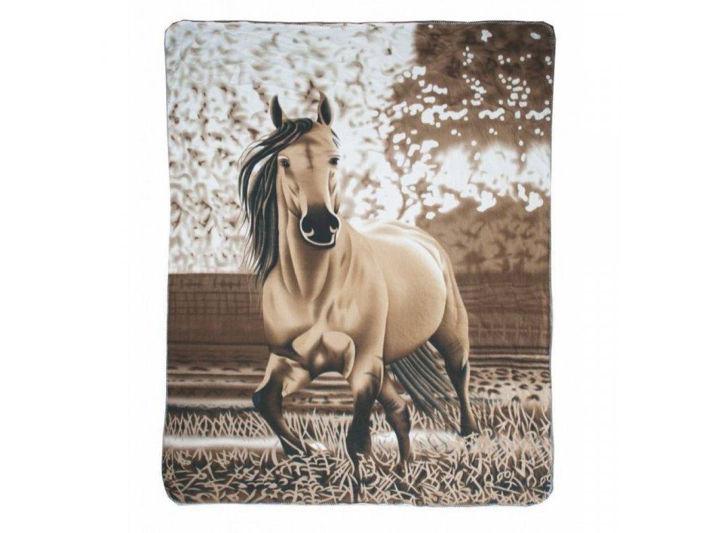 deka s koněm