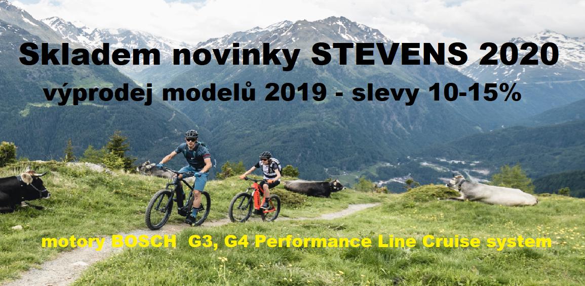Stevens 2020