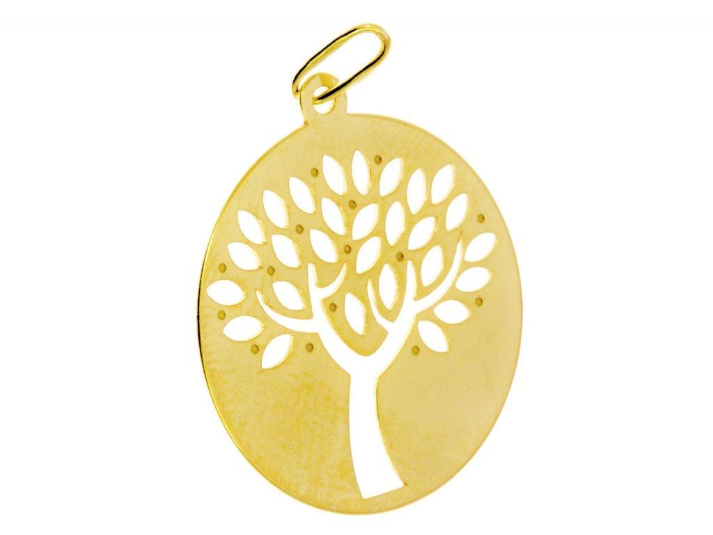 Přívěsek ze žlutého zlata H696