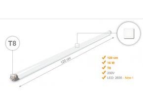 120cm B NEUTRAL 1