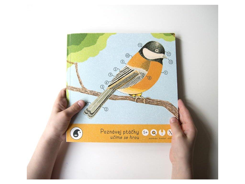PIPASIK Poznávej ptáčky