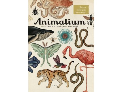 ALBATROS Animalium