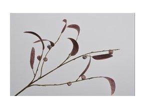 Větvička eukalyptu 80 cm