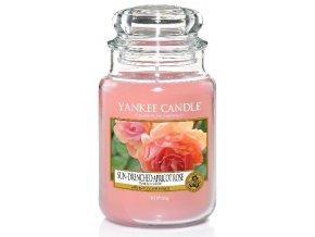 Svíčka Classic velký SUN DRENCHEDAPRICOT ROSE Yankee Candle