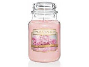 Yankee Candle vonná svíčka BLUSH BOUQUET classic velký