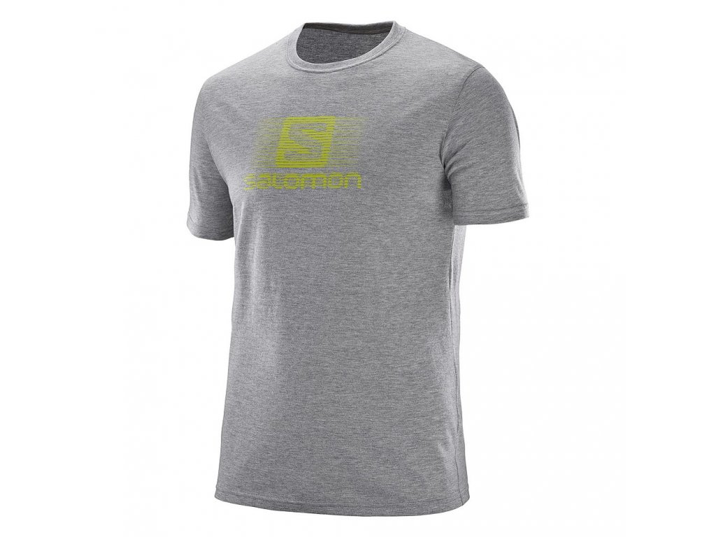 Salomon BLEND LOGO SS TEE M Grey Heather