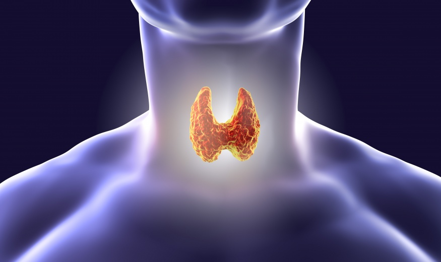 SNÍŽENÁ činnost štítné žlázy (hypotyreóza) U DĚTÍ