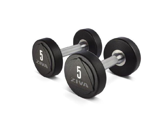 zvo solid steel urethane dumbbells