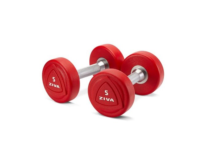zvo 1 10kg solid steel urethane dumbbell set (1)