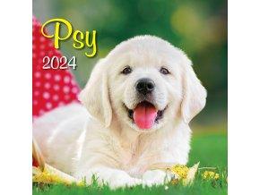 Motorsport OB UNI 485x340