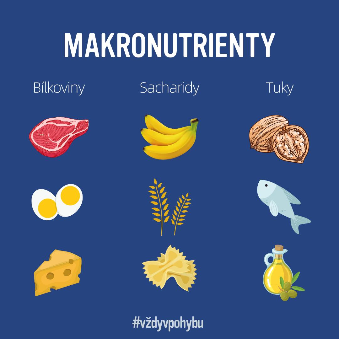 Makronutrienty a co byste o nich měli vědět