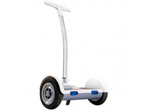 segway-chariot-bily