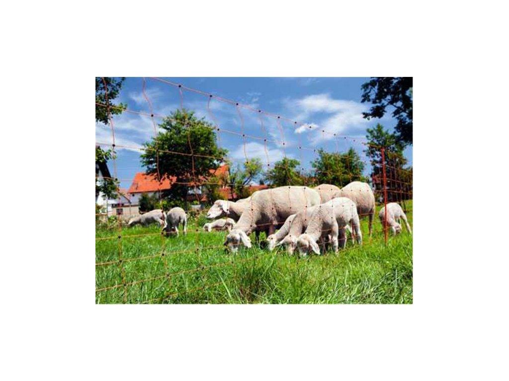 Síť ohradníková pro ovce, oranžová, 108cm, dvojitá špice