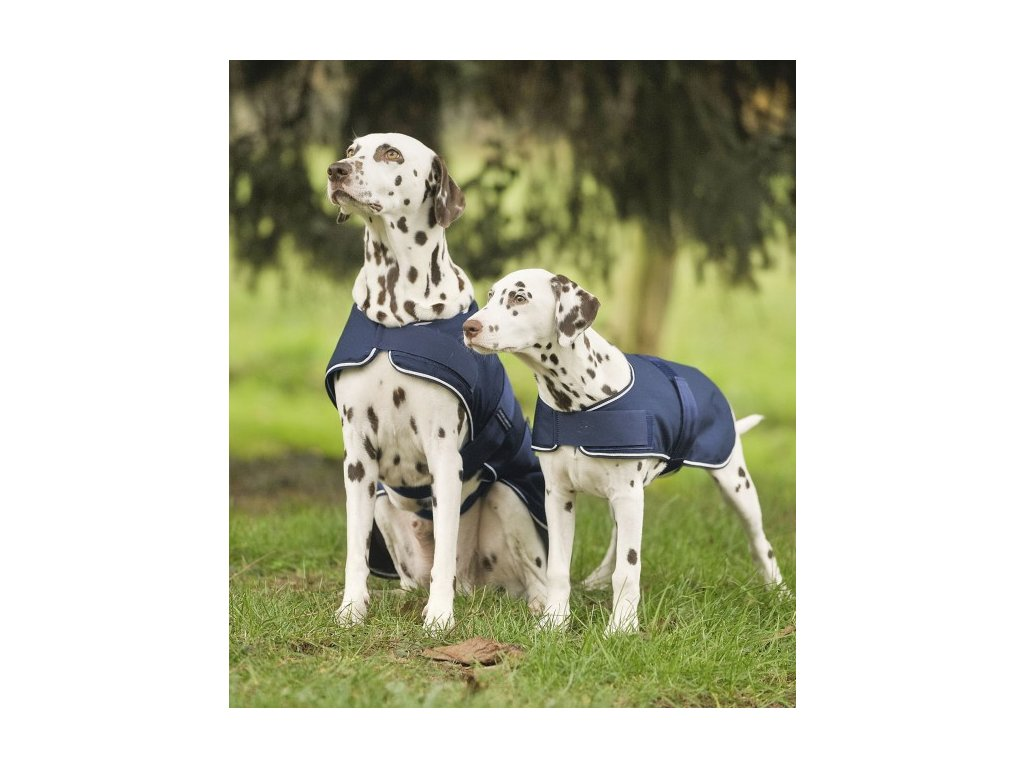 Pláštěnka pro psa 35 cm