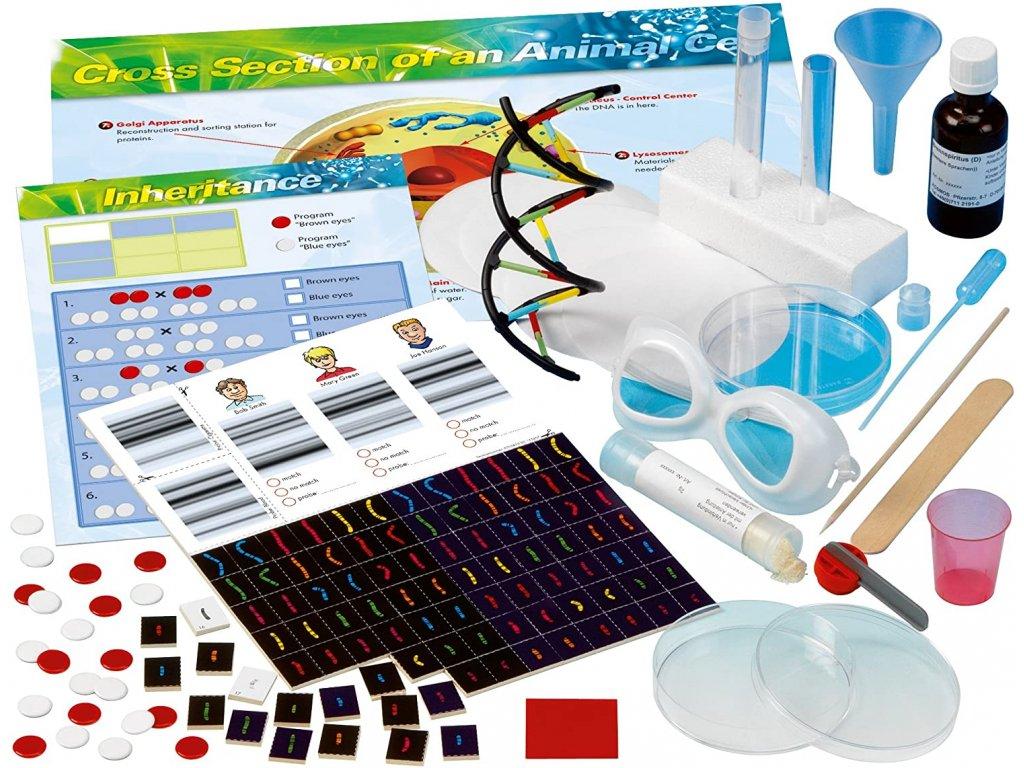 266 experiment set genetika dna