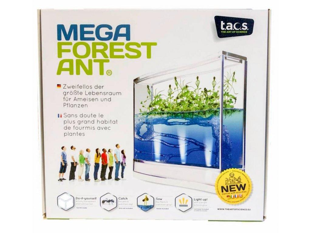 MEGALabák pro pozorování mravenců s LED osvětlením