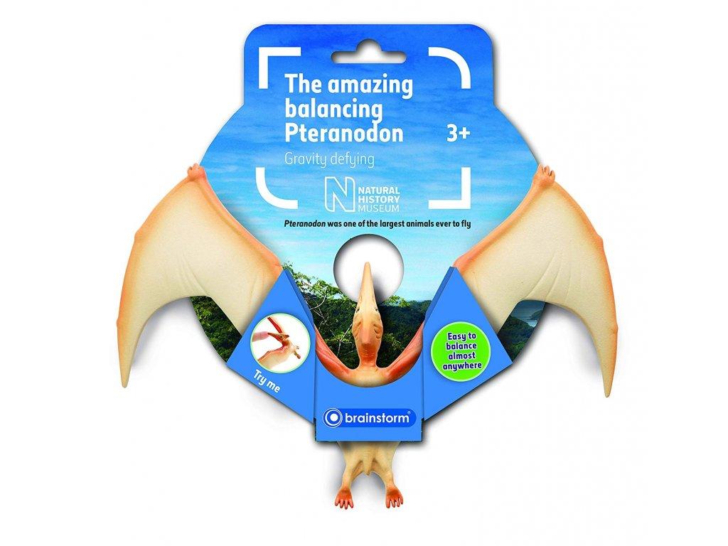 Pteranodon v rovnováze