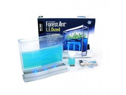 Laboratoři pro pozorování mravenců s LED osvětlením
