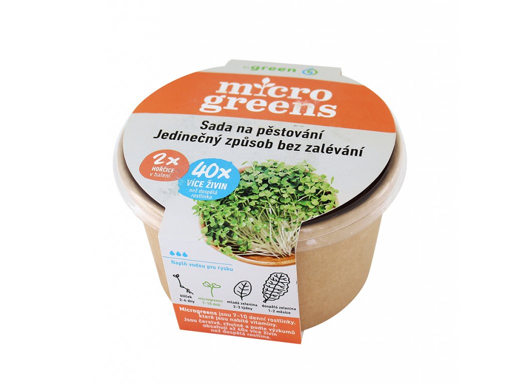 Micro greens sada na pěstování - hořčice