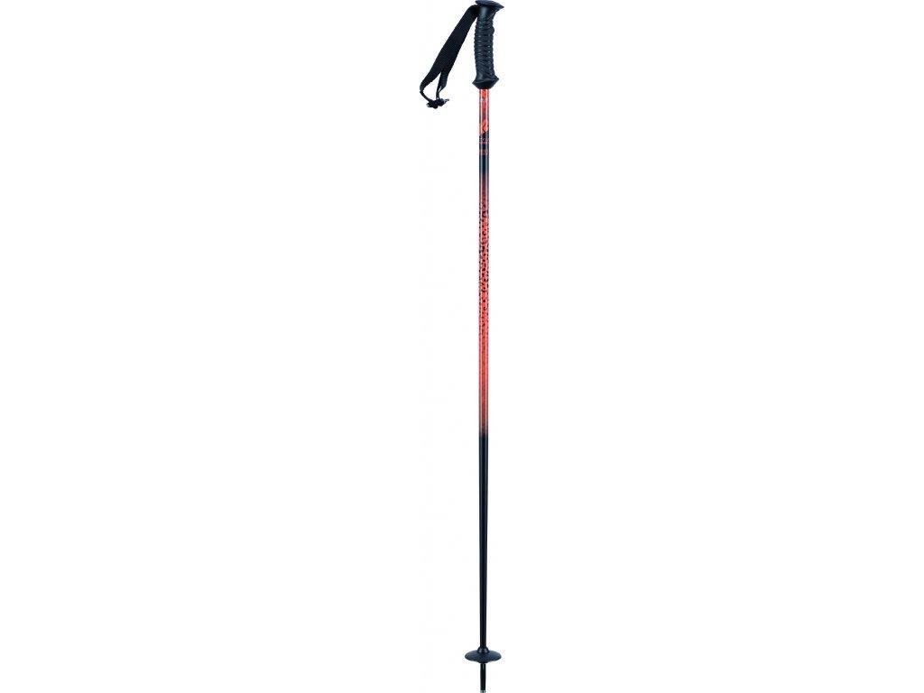 10E3006 1 1 F20 Poles Style Alu 2 high res