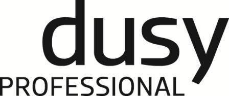 dusyPROF_logo