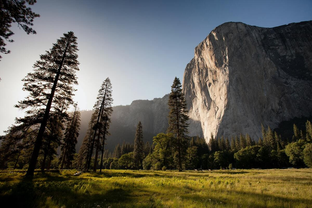 Volání přírody, záchrana zdraví, a možná i skvělý dárek?
