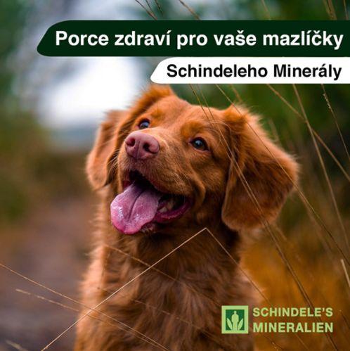 Schindeleho_Minerály_Domácí_Mazlíčci