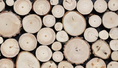 Přípravky na dřevo a papír