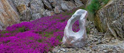 Okrasné soliterní kameny