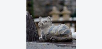 socha kočka z kamene