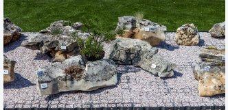 kameny do skalky s květinami 2