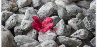 kamínky Valašské Meziříčí
